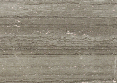 "OLY Marble Didyma Dark Size 12""x 24"" Polished"