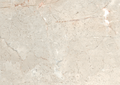 "OLY Marble Fossil Cream Size 12""x 12"" Polished"