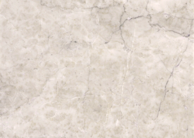 "OLY Marble Gala Grey Size 12""x 12"" Polished"